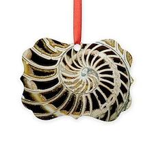 e4420080 Ornament