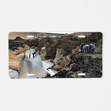 Gas pipeline explosion, Ukr Aluminum License Plate