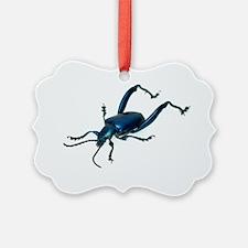 Frog beetle Ornament