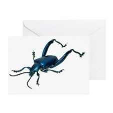 Frog beetle Greeting Card