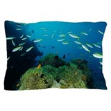 Fish underwater Pillow Cases
