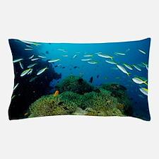 Fusilier fish Pillow Case