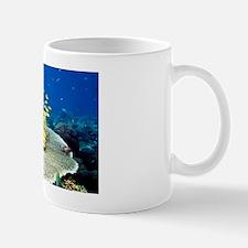 Golden lined snappers over coral Mug
