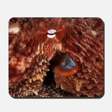 Giant Pacific octopus Mousepad
