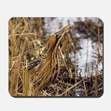 Great bittern in reed bed Mousepad