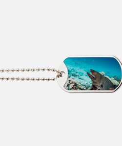 Giant moray eel and cleaner wrasse Dog Tags