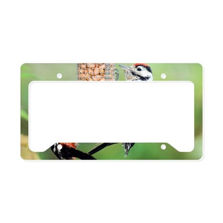Great spotted woodpeckers fee License Plate Holder