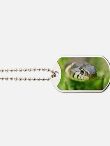 Grass snake Dog Tags