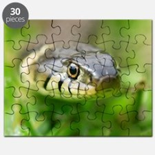 Grass snake Puzzle