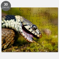 Grass snake feigning death Puzzle