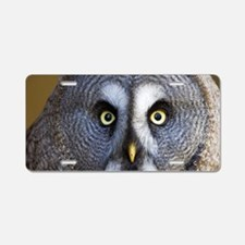 Great grey owl Aluminum License Plate