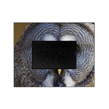 Great grey owl Picture Frame