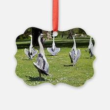 Grey herons Ornament
