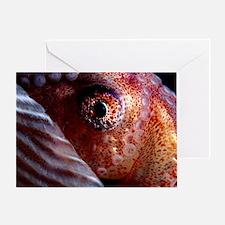 Greater argonaut eye Greeting Card