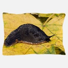 Great black slug Pillow Case