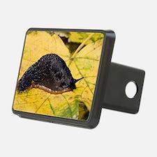 Great black slug Hitch Cover