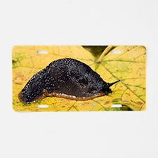 Great black slug Aluminum License Plate