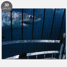 Great white shark Puzzle