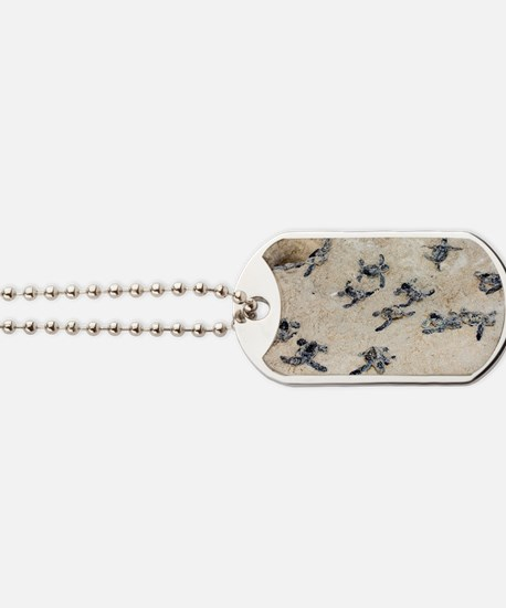 Green turtle hatchlings Dog Tags