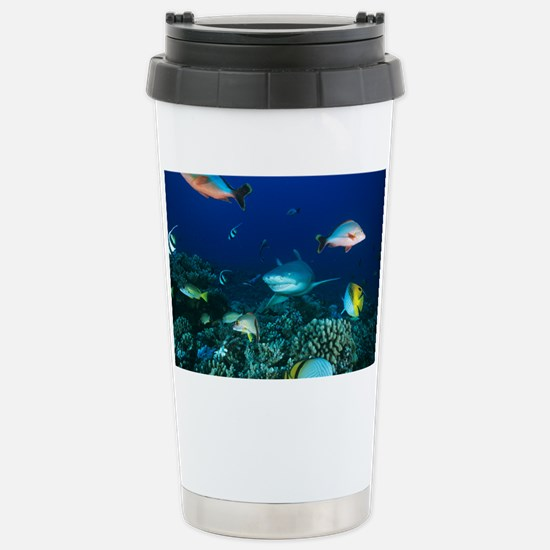 z6000252 Stainless Steel Travel Mug