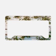 Hydroponic cultivation of sag License Plate Holder