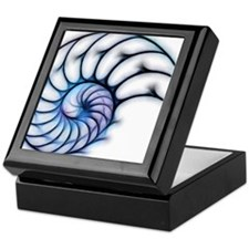 Sectioned shell of a nautilus, artwor Keepsake Box
