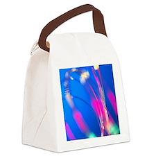 Optical fibres Canvas Lunch Bag