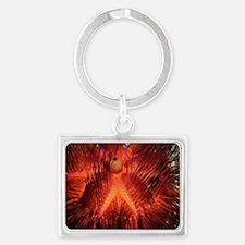 False fire urchin Landscape Keychain