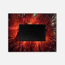 False fire urchin Picture Frame