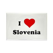 I Love Slovenia Rectangle Magnet (100 pack)