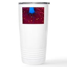 Macrophage attacking ba Travel Mug