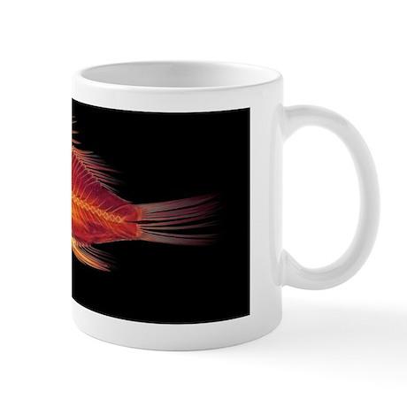 Fish, X-ray Mug