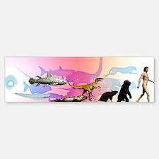Evolution of man Bumper Bumper Sticker