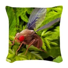Fruit fly, SEM Woven Throw Pillow