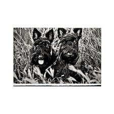 Best Friends - Scottie Dogs #2 Rectangle Magnet