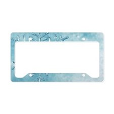 glass snowflake License Plate Holder