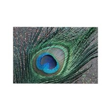 Sparkly Black Peacock Rectangle Magnet