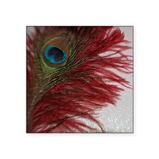 "Peacock with Red Square Sticker 3"" x 3"""