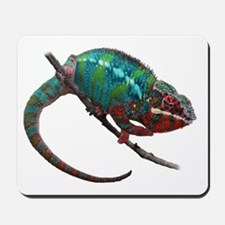 red and blue panther chameleon Mousepad