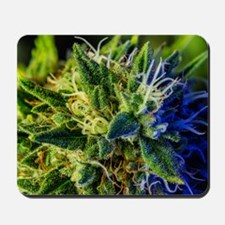 glistening trichomes Mousepad