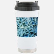 LGTRAY Stainless Steel Travel Mug