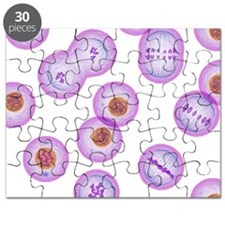 Mitosis, artwork Puzzle