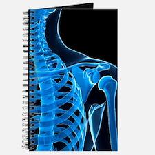 Shoulder bones, artwork Journal
