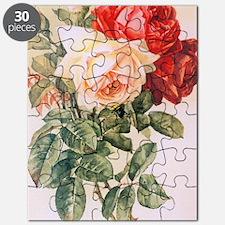 tr_3_5_area_rug_833_H_F Puzzle