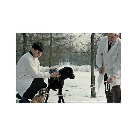 Demikhov's laboratory dogs, 1967 Rectangle Magnet