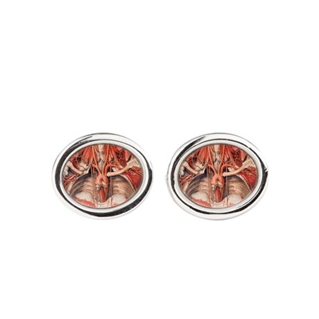 Blood vessels of chest and neck Cufflinks