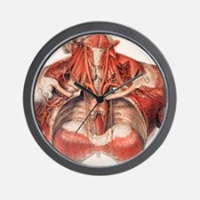 Blood vessels of chest and neck Wall Clock
