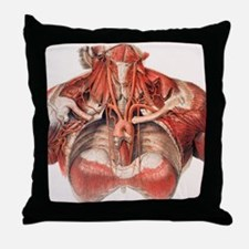 Blood vessels of chest and neck Throw Pillow