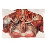 Anatomy Pillow Cases