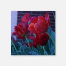 "Red Flowers Square Sticker 3"" x 3"""